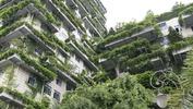 Китай строи първия горски град