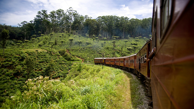 Най-невероятните пътувания с влак в Шри Ланка