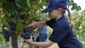 Българка произвежда най-доброто вино в Австралия