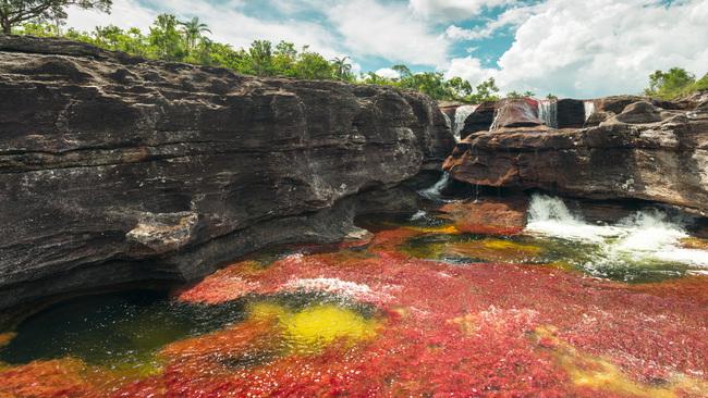 Нови правила в Каньо Кристалес опазват флората от туристи