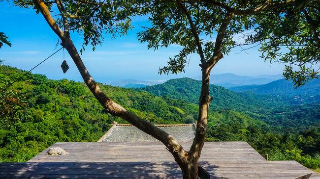 Вижте тези огромни хамаци в джунглата - На ръба - Peika.bg 50a265756403c