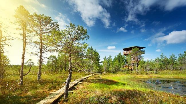 Изумителните природни паркове на Естония