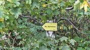 Изкачване на връх Дупевица - първенецът на Люлин планина
