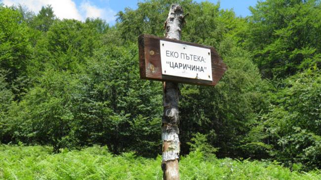 Екопътека Царичина и 150-годишните букови гори