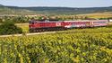 7 от най-живописните пътешествия с влак в България!