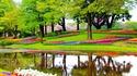 Цветните градини край Амстердам