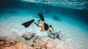 8 приключения, които да опитате на Бахамите
