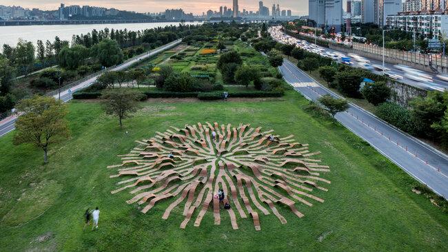 Невероятна пейка прилича на масивни корени на дърво
