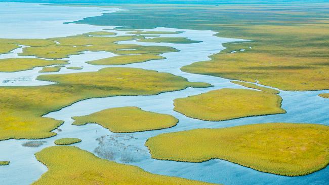 Нов национален парк отвори врати в Аржентина