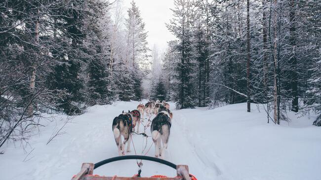 Ето защо трябва да посетите Финландия!
