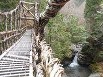 Вижте мостовете от лози в Япония