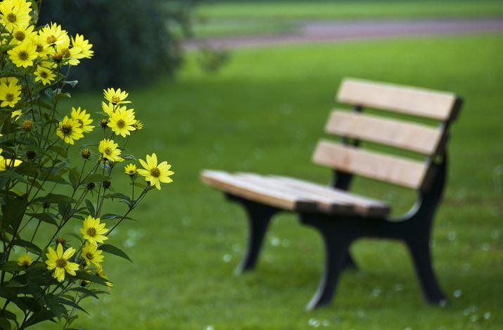 10 причини да обикнете месец май - Класации - Peika.bg