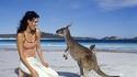 Да погалиш кенгуру в Австралия