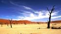 Намибия: Акации, мъртви от 900 години