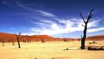 10-те най-красиви пустини в света
